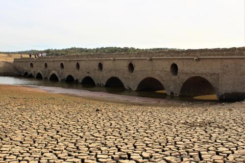 Reviver a Ponte by António Francisco Ribeiro de Oliveira