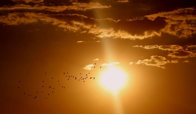 El Sol y el cambio climático