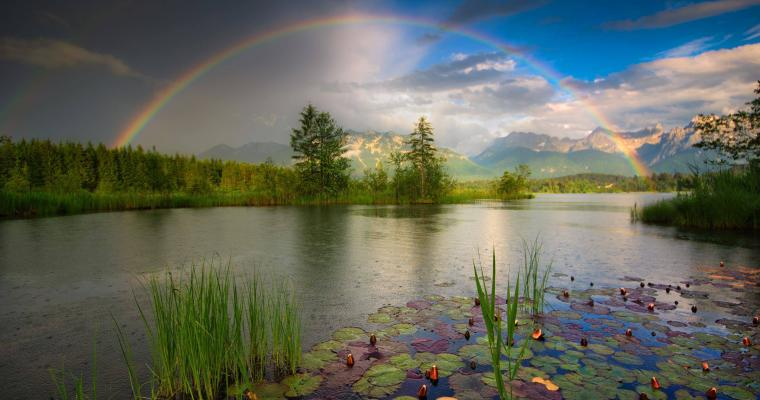 Rainbow dream by Maximilian Ziegler