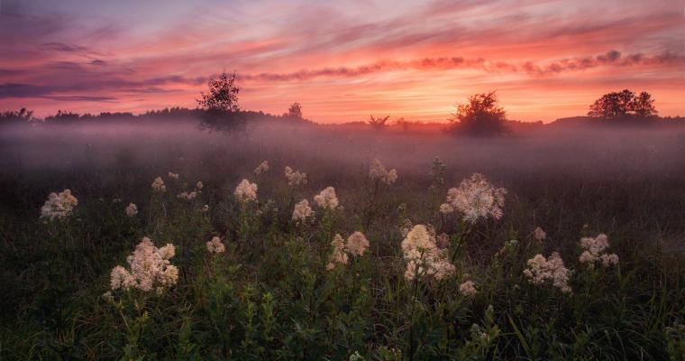 Foggy evening by Alexey Sergovantsev